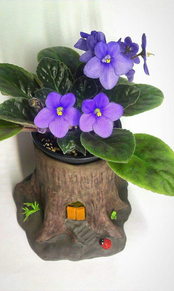 http://bazarziba.com/wp-content/uploads/african-violet-pot-clay-600x1004.jpg