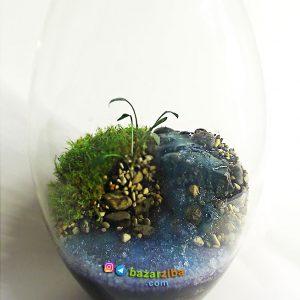 گلدان تراریوم با طرح منظره رودخانه جاری و چشمه سار با گیاهان و خزه طبیعی برای دکوراسیون و هدیه