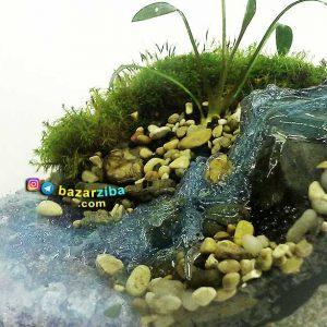 تراریوم با طرح منظره رودخانه زیبا مینیاتوری دست ساز با گیاه و خزه طبیعی